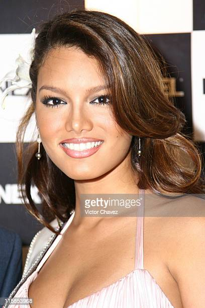 Zuleyka Rivera Miss Universe 2006 during Miss Universe 2007 Nextel Dinner at Hotel Condesa DF in Mexico City Mexico