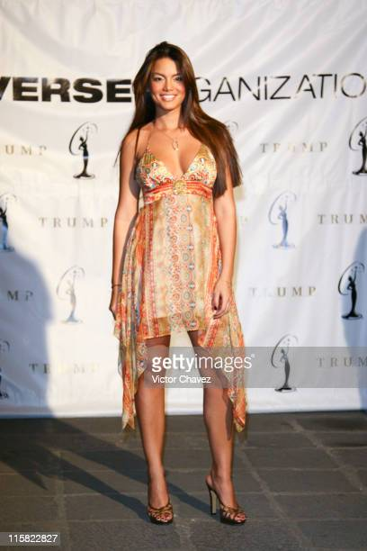 Zuleyka Rivera Miss Universe 2006 during Miss Universe 2007 Zuleyka Rivera Miss Universe 2006 Arrives In Mexico City at Hotel Camino Real in Mexico...