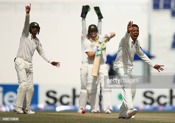 Zulfiqar Babar of Pakistan appeals sucsessfully for the wicket of Steve Smith of Australia during Day Two of the Second Test between Pakistan and...