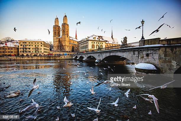Zurich Grossmunster in Winter with Birds