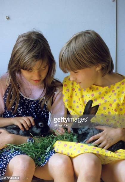 Zwei Mädchen mit Kaninchen in der Station Junger Techniker und Naturforscher in Flöha aufgenommen im Juni 1986 Die Stationen waren außerschulische...