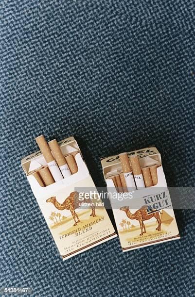 Zwei Zigarettenpäckchen der Marke Camel Beide sind geöffnet jeweils zwei Filterzigaretten sind halb herausgezogen Die rechte Packung hat den...