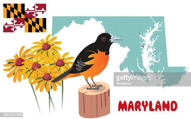 maryland - baltimore maryland stock illustrations, clip art, cartoons, & icons