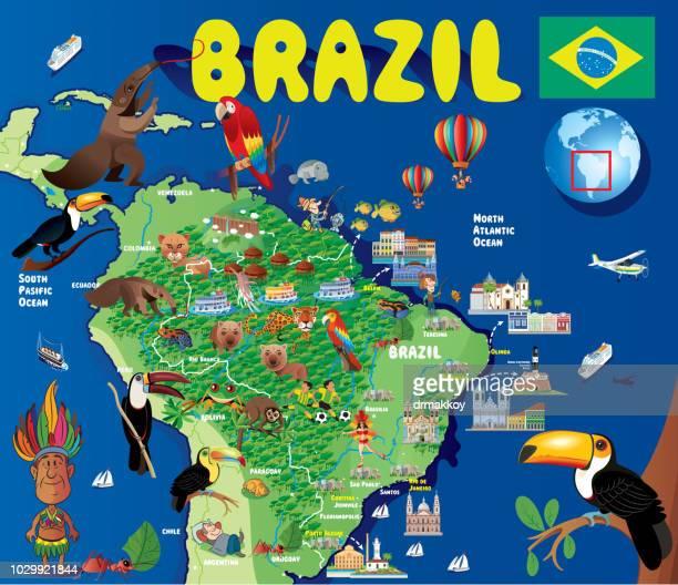 cartoon map of brazil - anteater stock illustrations