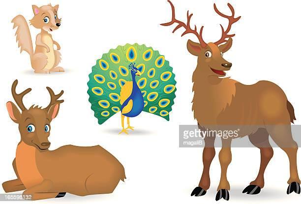 illustrations, cliparts, dessins animés et icônes de animal - biche