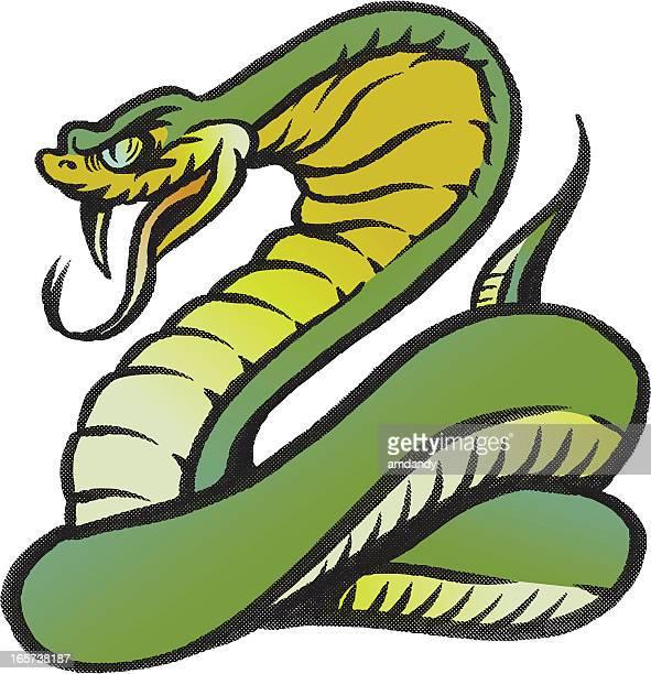 ilustraciones, imágenes clip art, dibujos animados e iconos de stock de cobra snakies - cobra