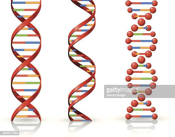 dna - dna stock illustrations