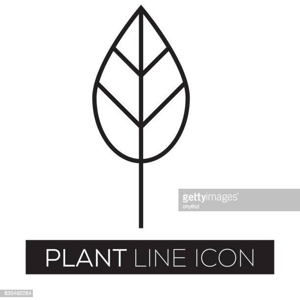 plant line icon - seedling stock illustrations