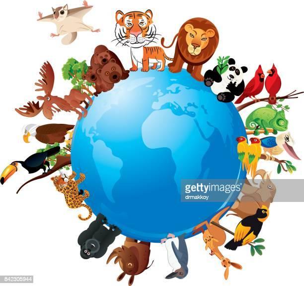 animals planet - madagascar stock illustrations, clip art, cartoons, & icons