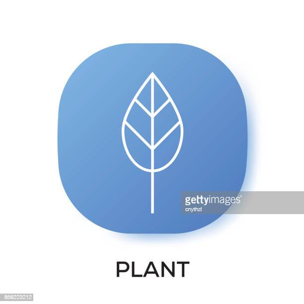PLANT APP ICON
