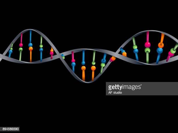 DNA Abstarct Background