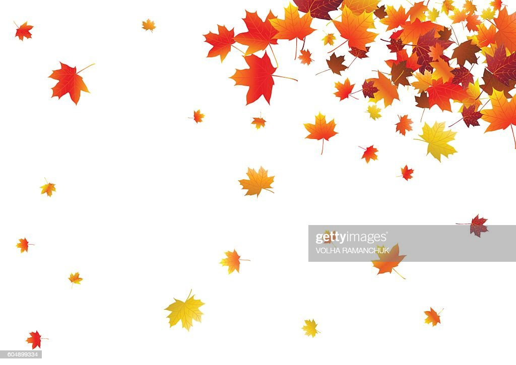Abstract background with flying maple leaves.