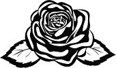 abstract black and white rose.