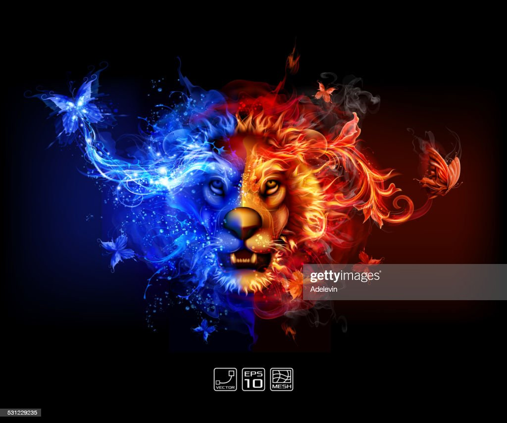 Abstract Fire and water lion : stock illustration