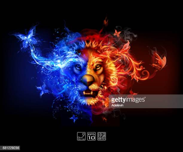 abstract fire and water lion - fire natural phenomenon stock illustrations, clip art, cartoons, & icons