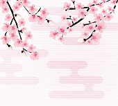 Abstract Floral Sakura Flower Japanese Natural Background Vector
