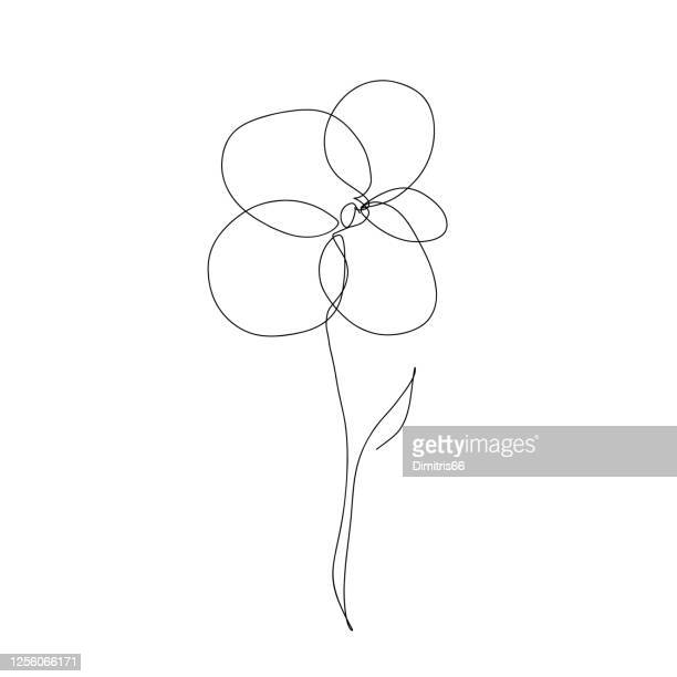 abstract flower in continuous line art drawing style - flower head stock illustrations