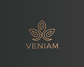 Abstract flower lotus icontype. Luxury crown linear icon. Gold premium spa hotel vector sign.