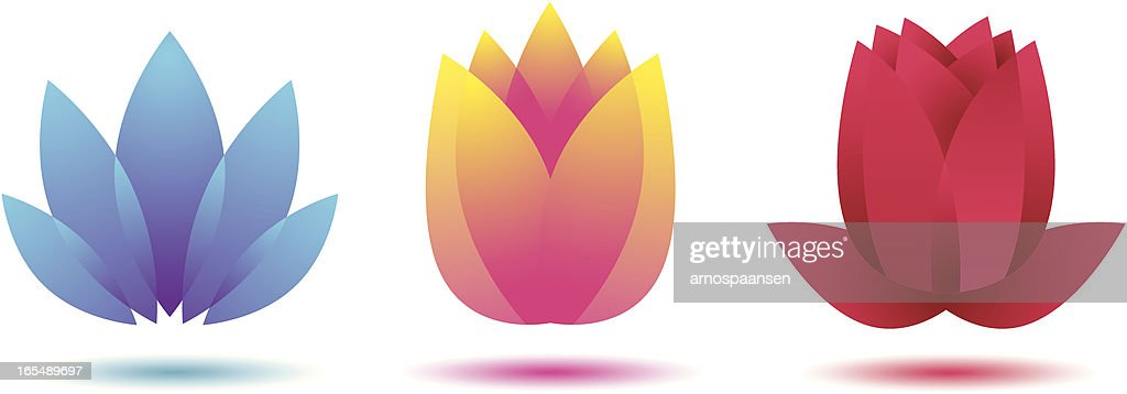 Abstract flowers lotus tulip rose