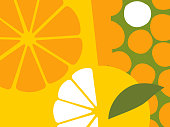 Abstract fruit design in flat cut out style. Oranges and orange sections.