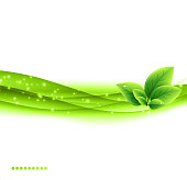 Abstract green Eco banner with leaves on a white background