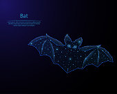 Abstract image of a bat in the form of a starry sky or space, consisting of points, lines, and shapes in the form of planets, stars and the universe. Low poly vector background.