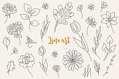 Abstract line art floral collection - tulip, rose, gerbera