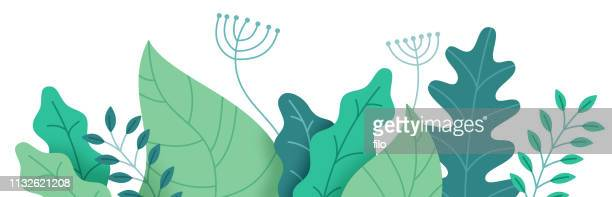 stockillustraties, clipart, cartoons en iconen met abstracte planten grens - illustratie