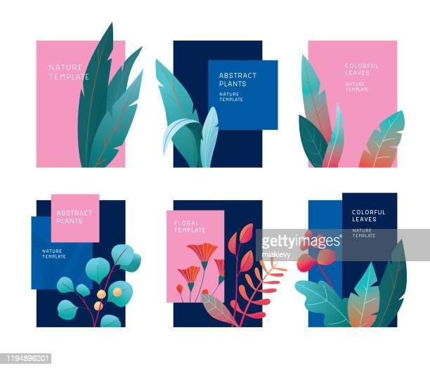 illustrazioni stock, clip art, cartoni animati e icone di tendenza di abstract plants template set - natura
