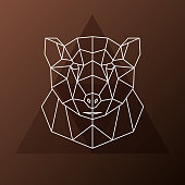 Abstract polygonal head of a brown bear. Vector illustration.