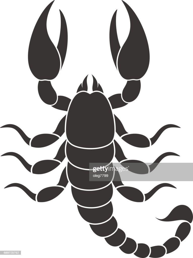Abstract scorpio. Isolated scorpio on white background