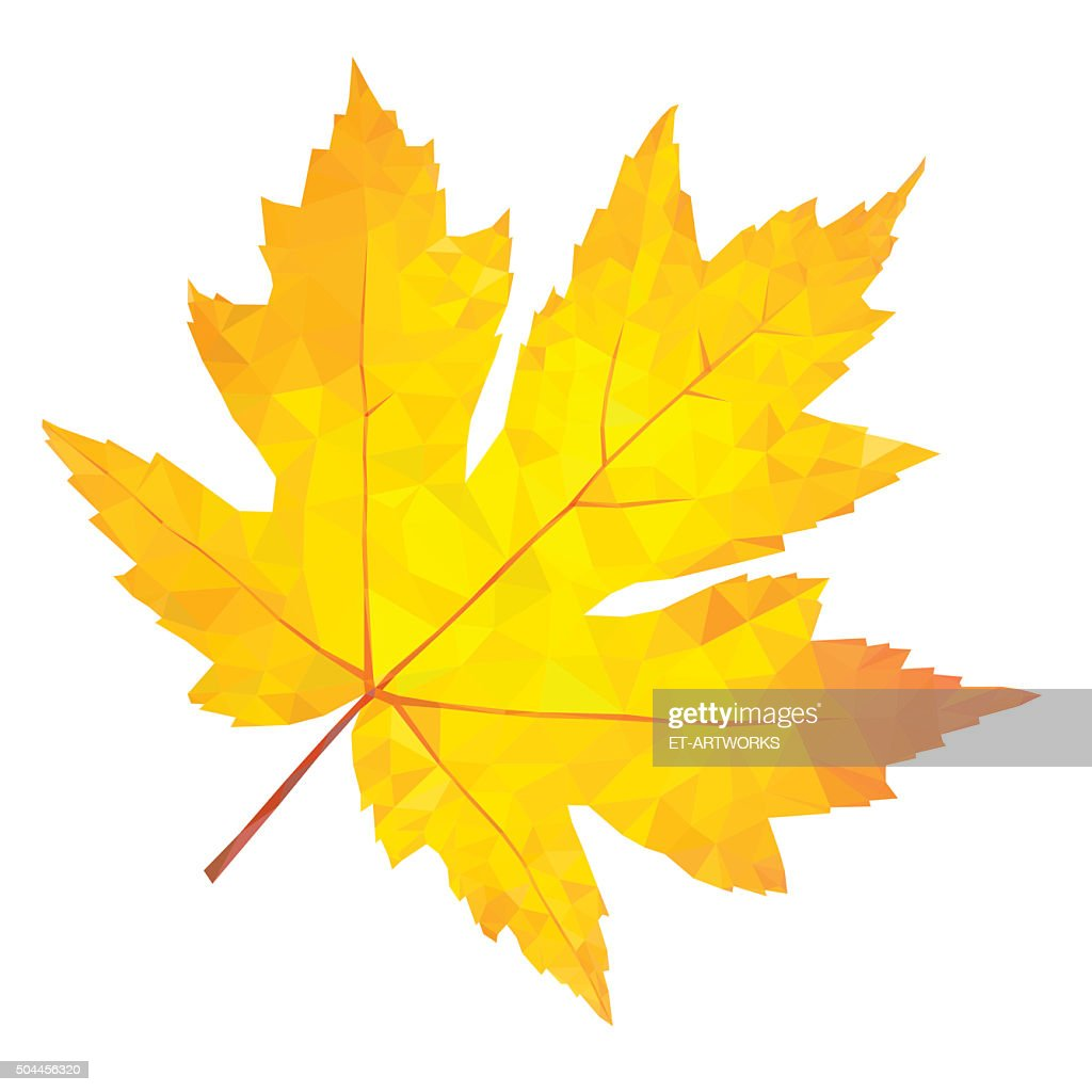 Abstract single yellow maple leaf