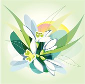 Abstract vector background with snowdrops.