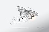 Abstract vector illustration of butterfly moving