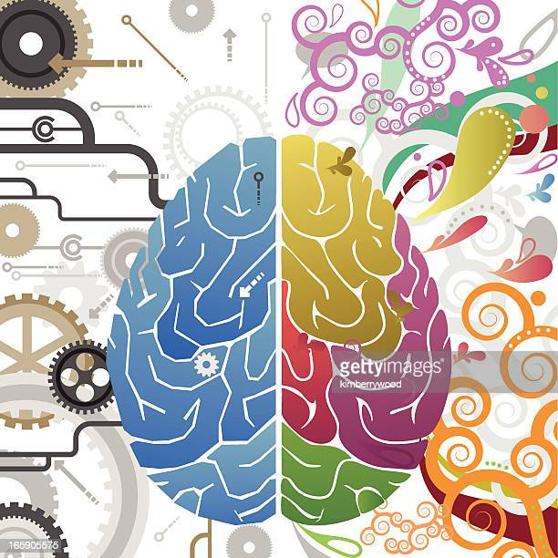 abstract vector illustration of left and right brain systems - cerebral hemisphere stock illustrations, clip art, cartoons, & icons