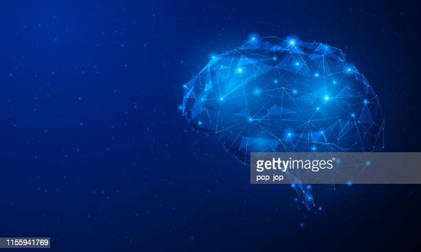 abstract vector image of human brain - three-dimensional low poly illustration. outlines, triangles, dots. plexus. template design on dark blue background. - igniting stock illustrations