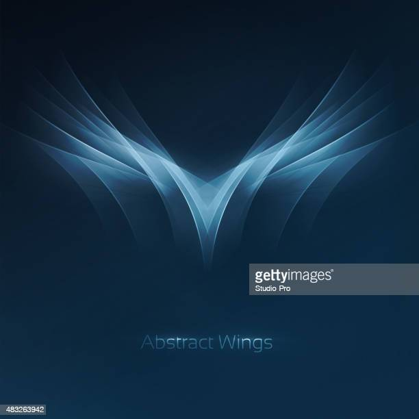 Abstract wings