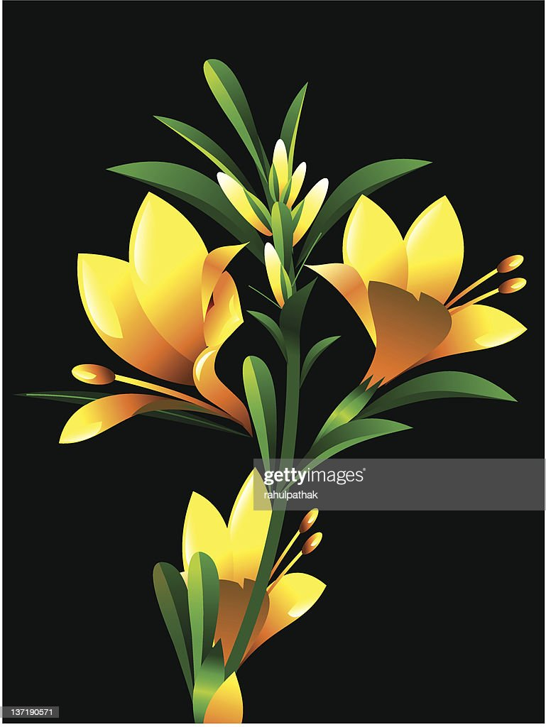abstract yellow oleander flower plant