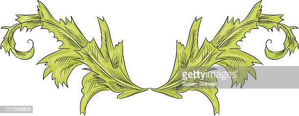 Acanthus leaf scroll