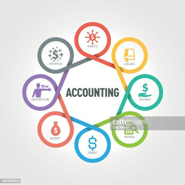 accounting infographic with 8 steps, parts, options - accounting ledger stock illustrations, clip art, cartoons, & icons
