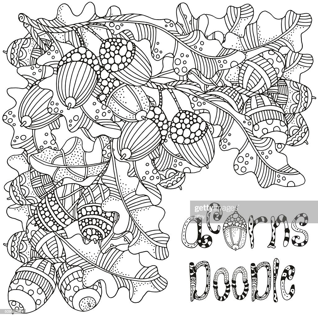 Acorn doodle. Artistically hand drawn acorns and oak leaves