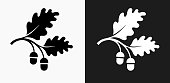 Acorn Icon on Black and White Vector Backgrounds