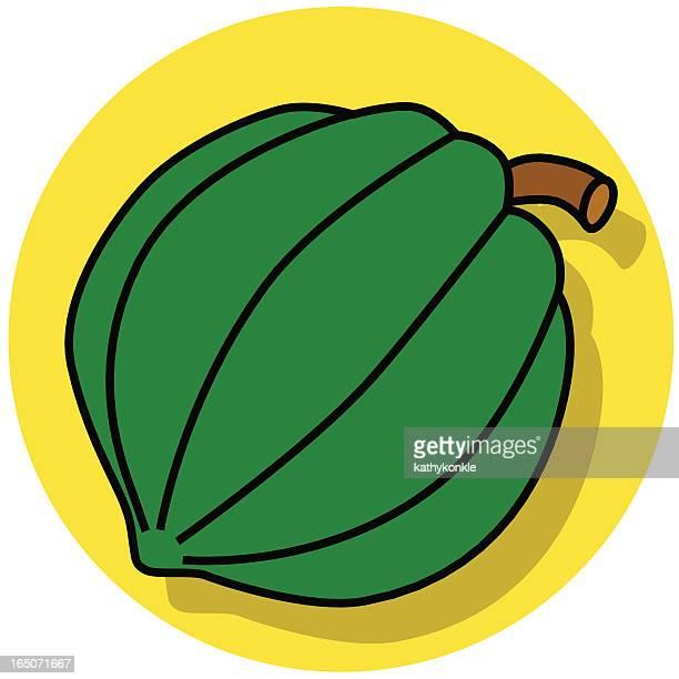 acorn squash-Symbol