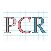 PCR (Polymerase Chain Reaction) acronym on checkered paper sheet