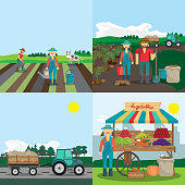 Activities farm family. The process of planting, growing vegetables and selling them