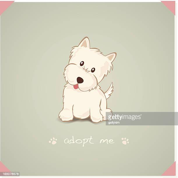 adopt a westie - licking stock illustrations, clip art, cartoons, & icons