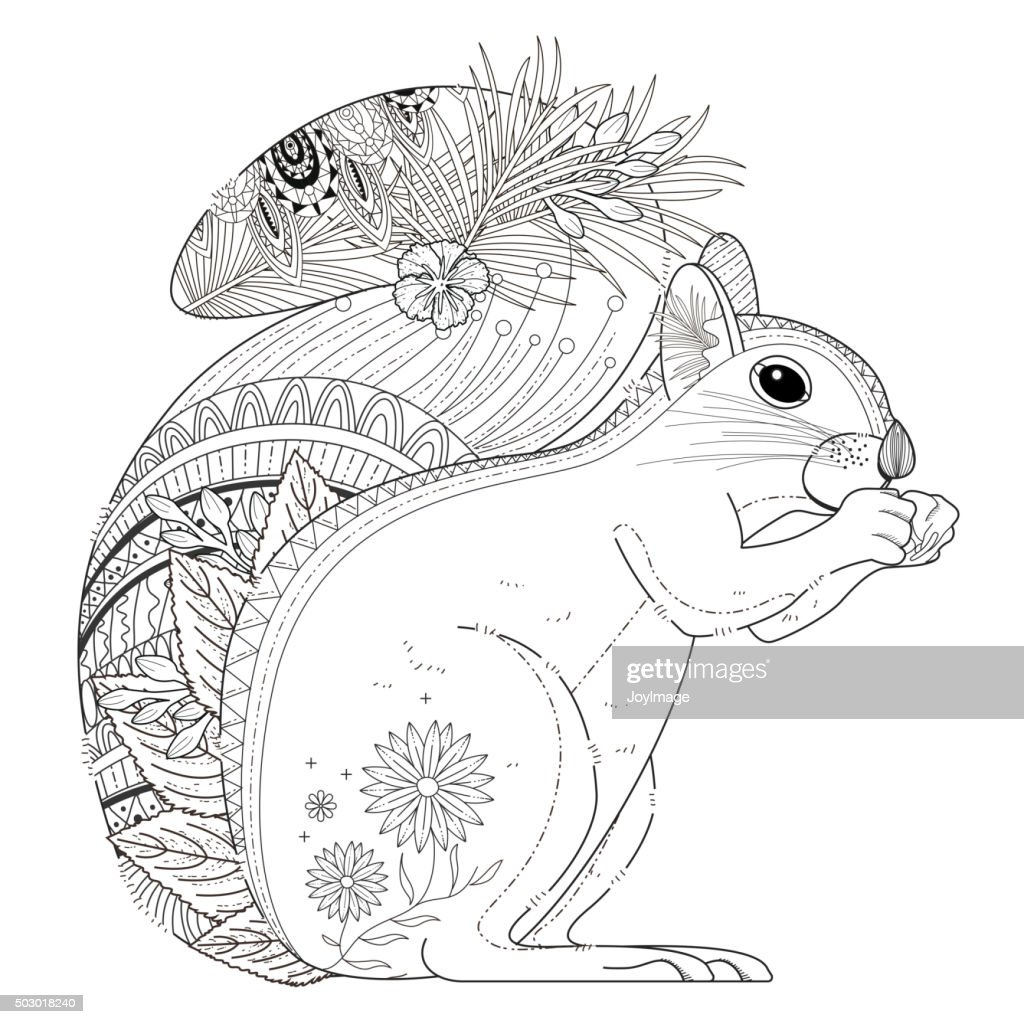 Adorable Squirrel Coloring Page Vector Art | Getty Images
