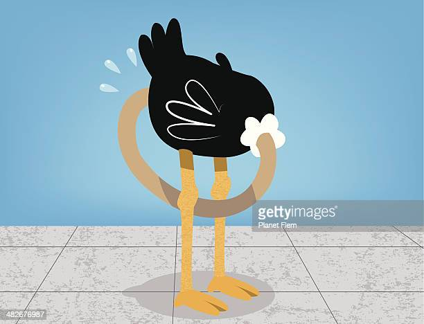 Afraid ostrich on a concrete floor