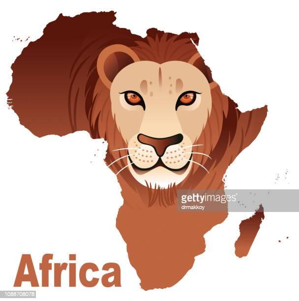 ilustraciones, imágenes clip art, dibujos animados e iconos de stock de áfrica y león - masai