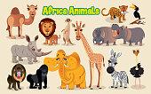 Africa enimals